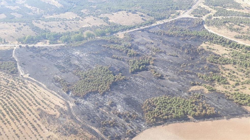 Controlado el incendio forestal declarado en el paraje Monte Malagón de Belalcázar