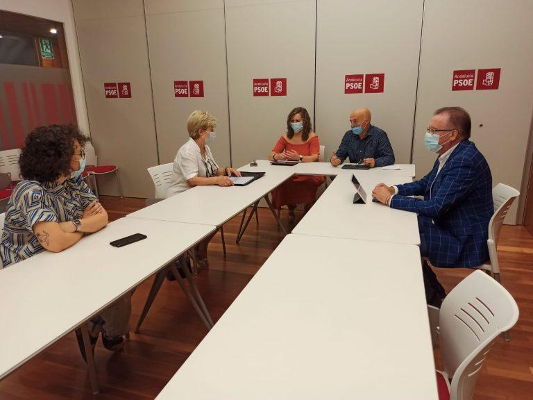 PSOE demanda que se repongan lo antes posible los trenes AVE en los Pedroches