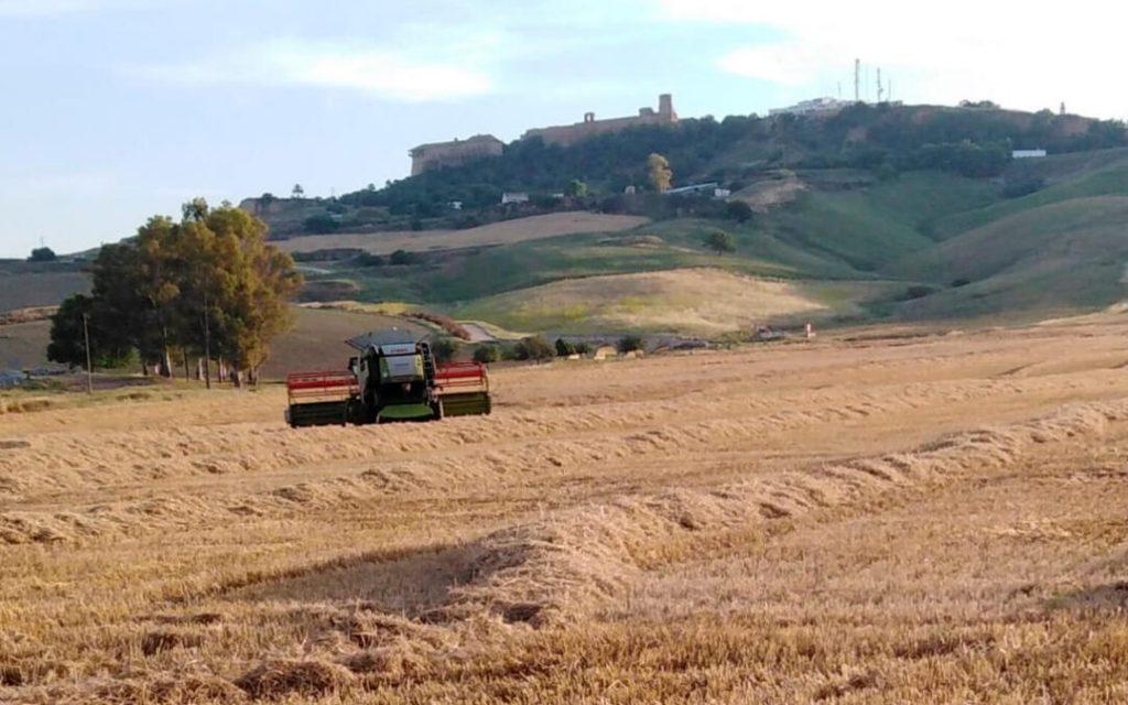 """Nuevo rechazo: """"La propuesta de reforma de la PAC esconde una reconversión sin precedentes del modelo profesional y social de agricultura"""""""