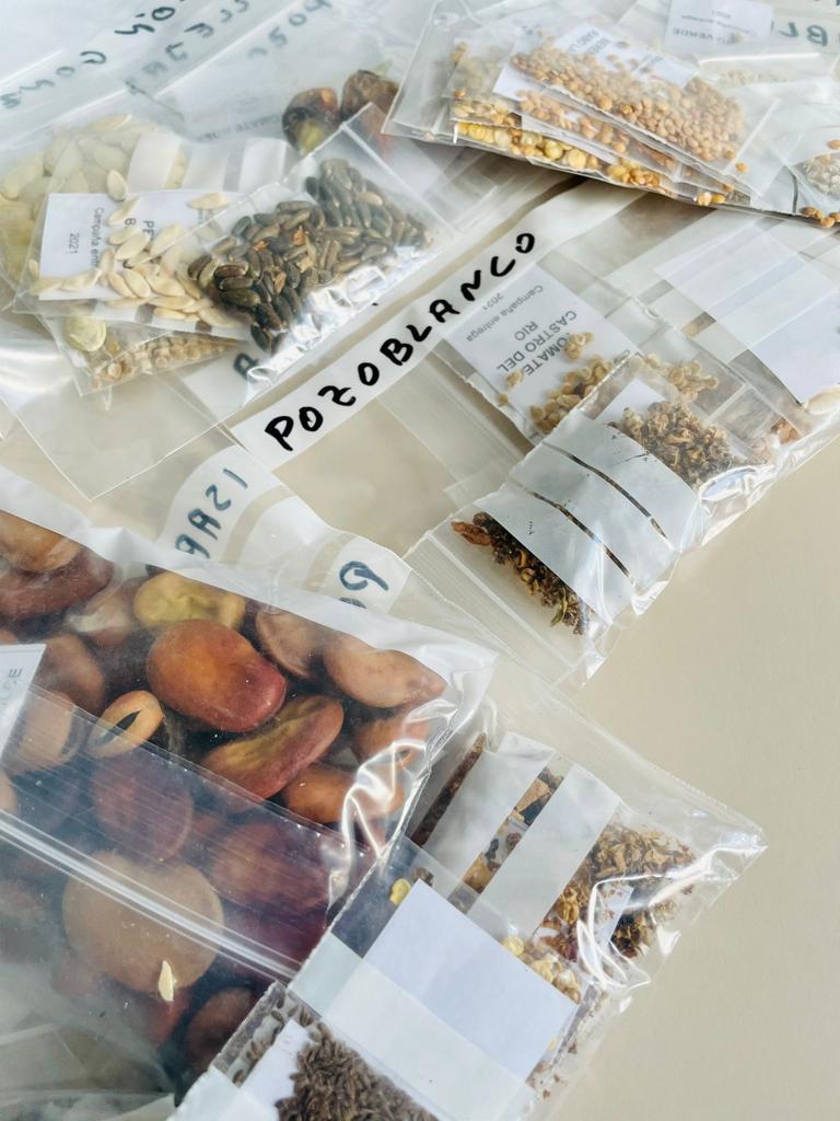 El Ayuntamiento de Pozoblanco reparte semillas de variedades hortícolas autóctonas