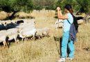 Abierto el plazo para inscribirse en la Escuela de Pastores de Andalucía de 2021