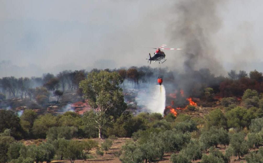 Declarado un incendio forestal en el Quinto del Huerto, en Belalcázar