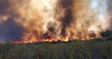 Asaja destaca la labor del Infoca en los incendios forestales de Alcaracejos y Villaharta